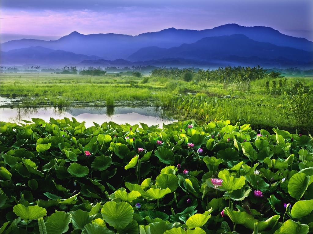 臺南白河關子嶺1日遊