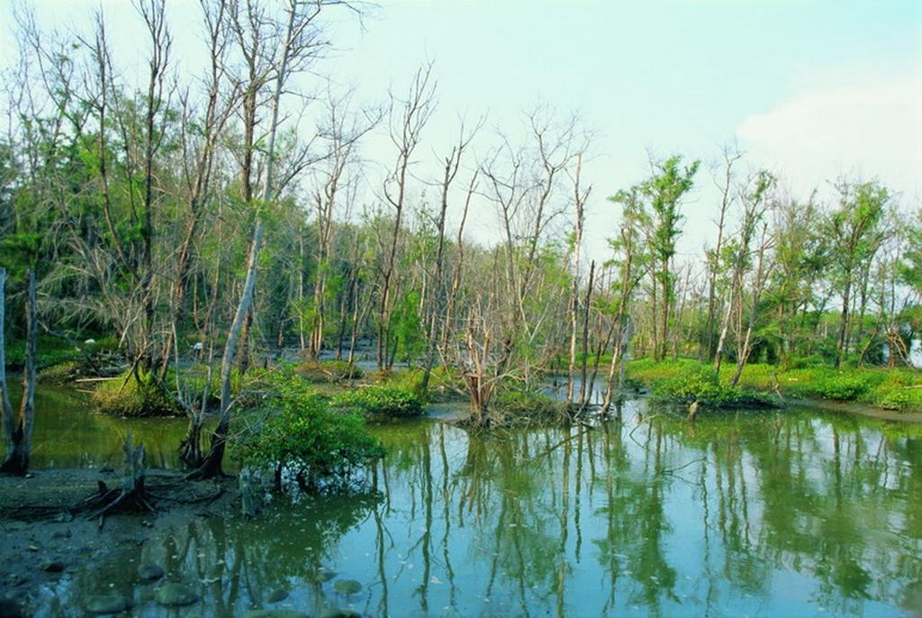 好美寮自然保護區