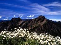 玉山山岳之旅-新中橫二日遊